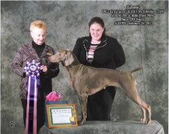 Reserve Best in Multi Breed Show